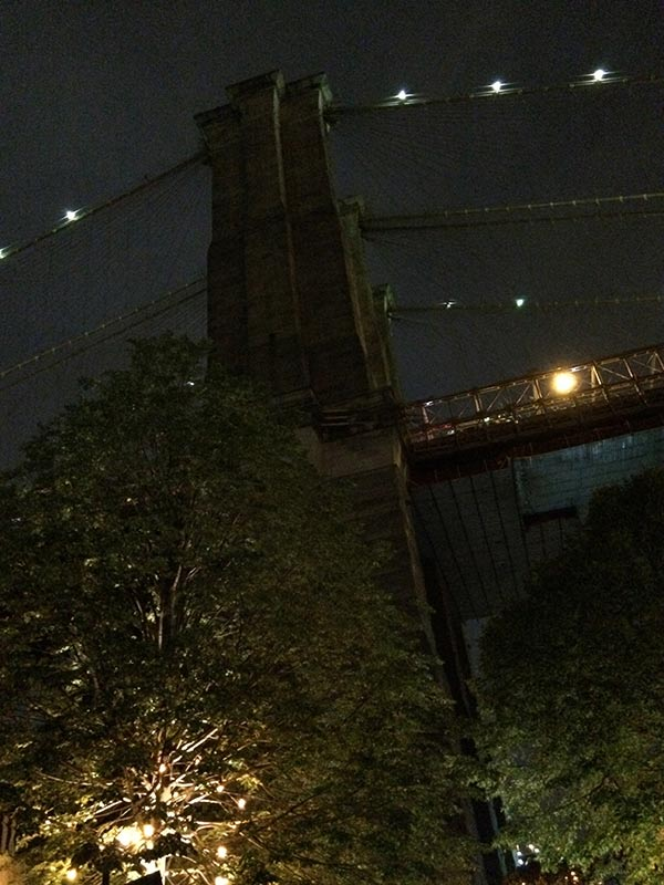 A_Love_Shared_Brooklyn_Bridge